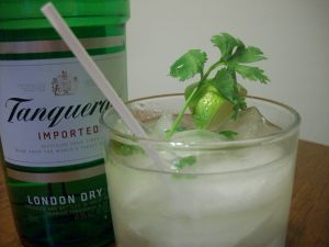 gin-and-tonic-cilantro